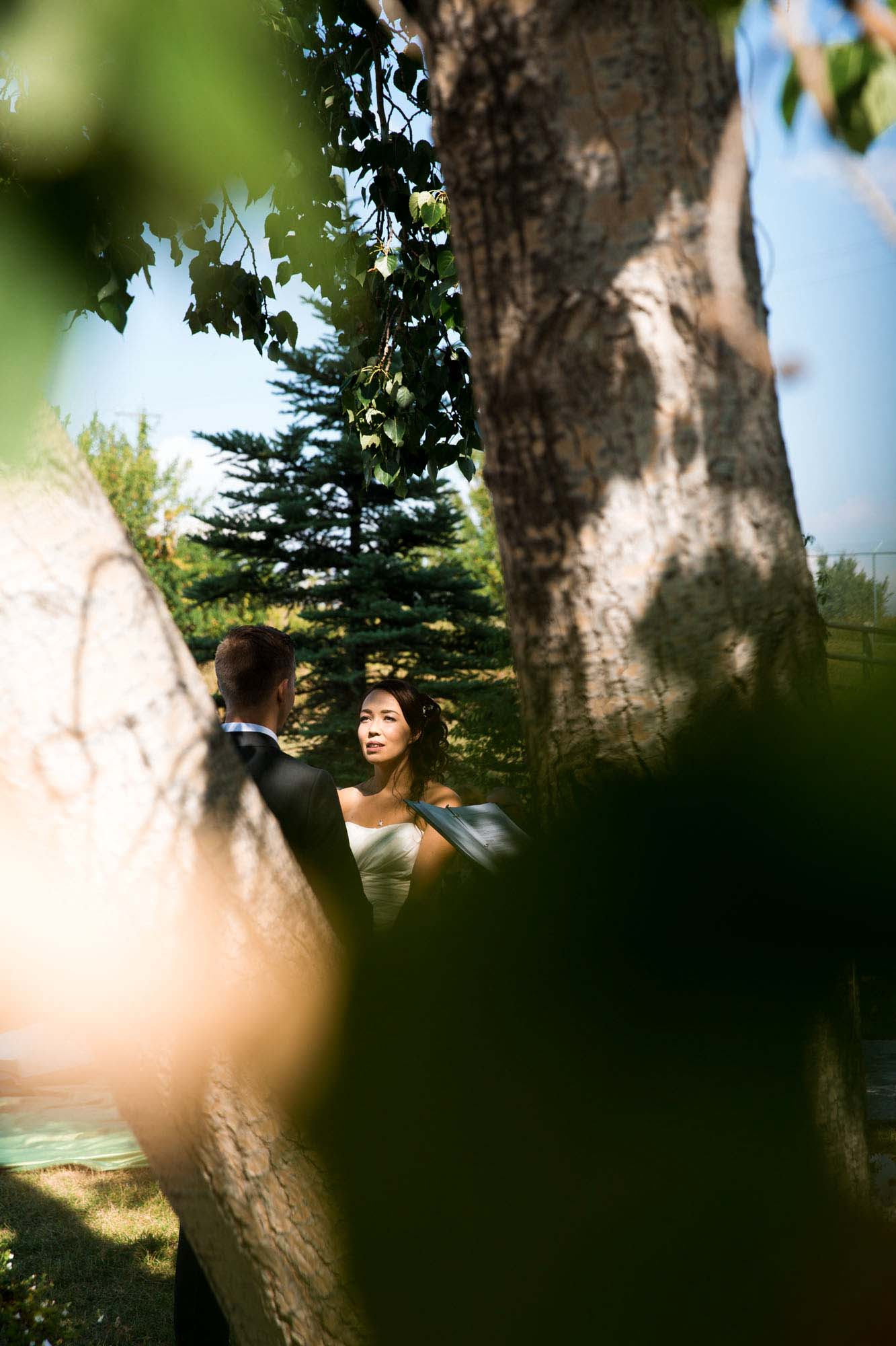 Calgary engagement and wedding photographer, micro wedding outdoors