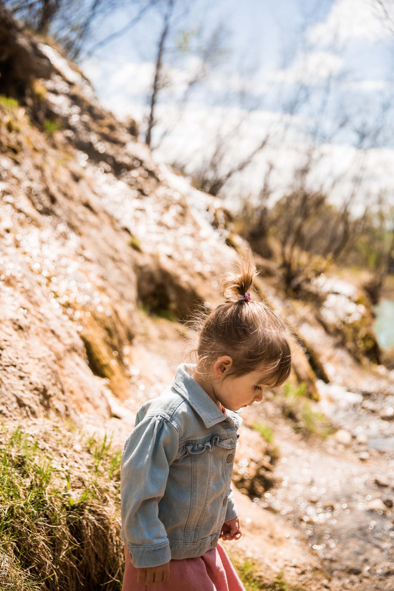 Calgary family photographer, family photos at Waterfall Valley in Bowmont Park
